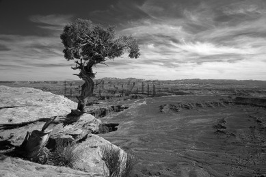 Cayonlands , Utah - black and white