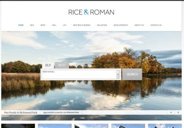 Rice & Roman